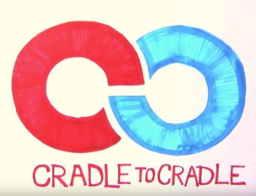 Was ist Cradle to Cradle?